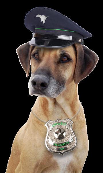 Dogtoi, Sam, Security